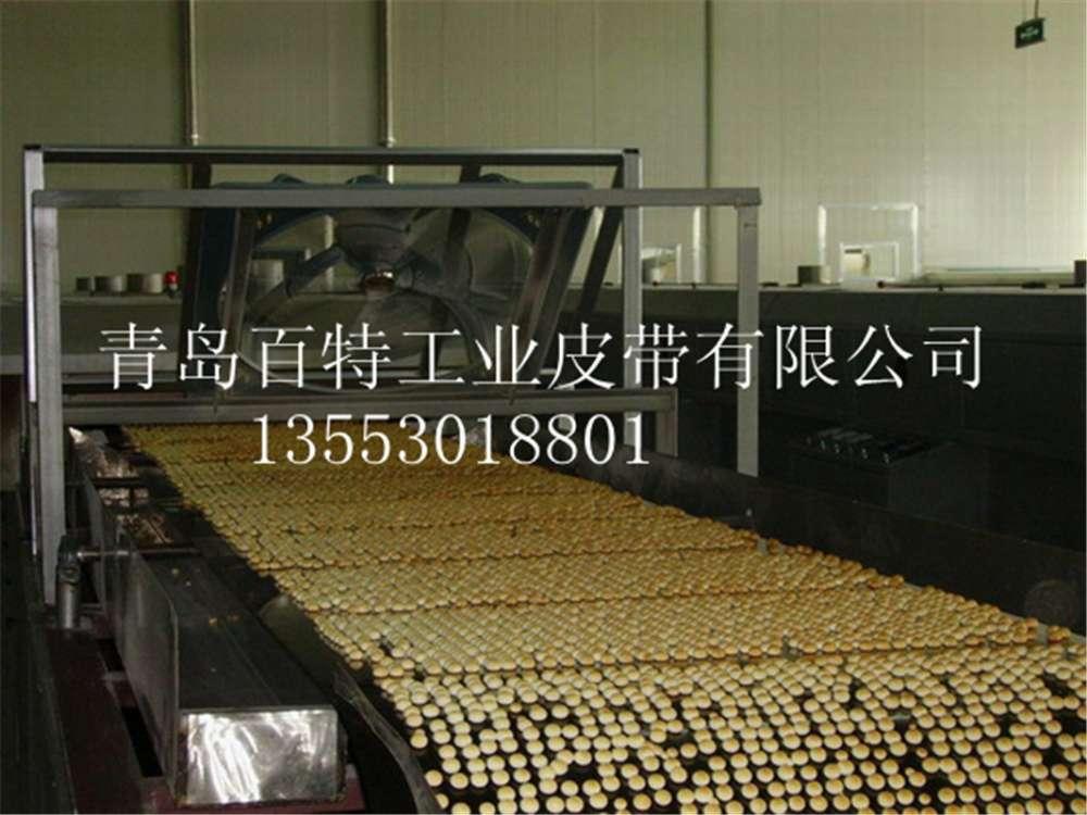 供应青岛输送带 山东输送带烘干带,食品输送带,切菜机输送带