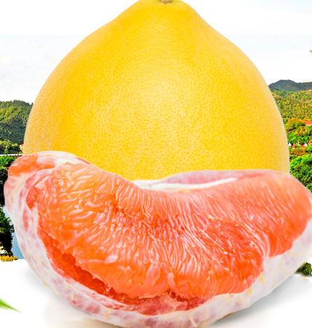 红心蜜柚 红肉柚子