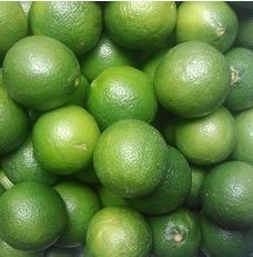 采购越南进口青柠檬
