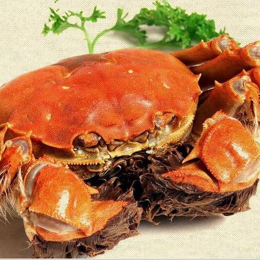 水阳镇螃蟹大闸蟹鲜活现货批发 2.0-2.5两母螃蟹 今天特价 顺丰包邮 死蟹包赔8只礼盒装
