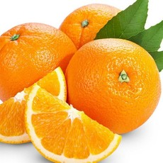 江西特产赣南脐橙5kg装 甜橙手剥橙新鲜水果赣南橙手提礼盒批发