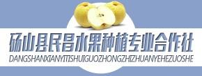 砀山县民昌水果种植专业合作社