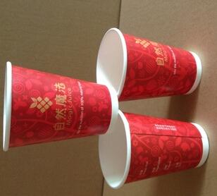 纸杯环保创意活动圆满结束