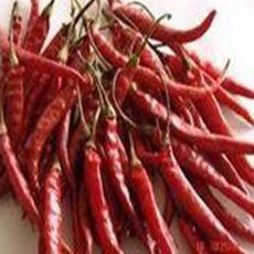 二荆条辣椒市场价格14元一千克质量保证优质