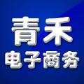东港青禾电子商务有限公司