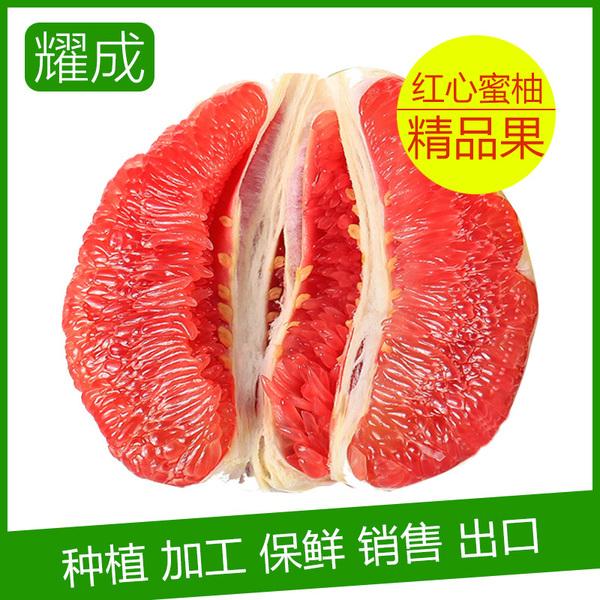 平和琯溪蜜柚 红肉蜜柚 产地直批  5000斤起