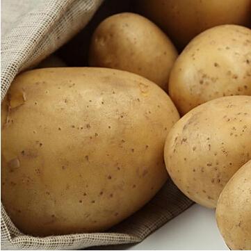 供应山东莱芜种植合作社绿色蔬菜纯天然 保鲜马铃薯