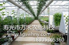 智能温室   玻璃智能温室   寿光市万禾农业