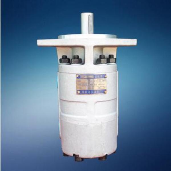 供应华为CBF-F10/10双联齿轮泵,CBF-F系列液压齿轮泵,液压油泵