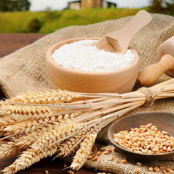基地直供 信业批发优质小麦 健康纯天然