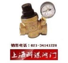 D06E压力平衡式减压稳压阀 以色列DOROT多若特可调式减压阀