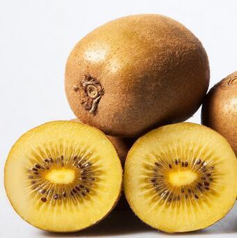 供应蒲江特产黄心猕猴桃奇异果