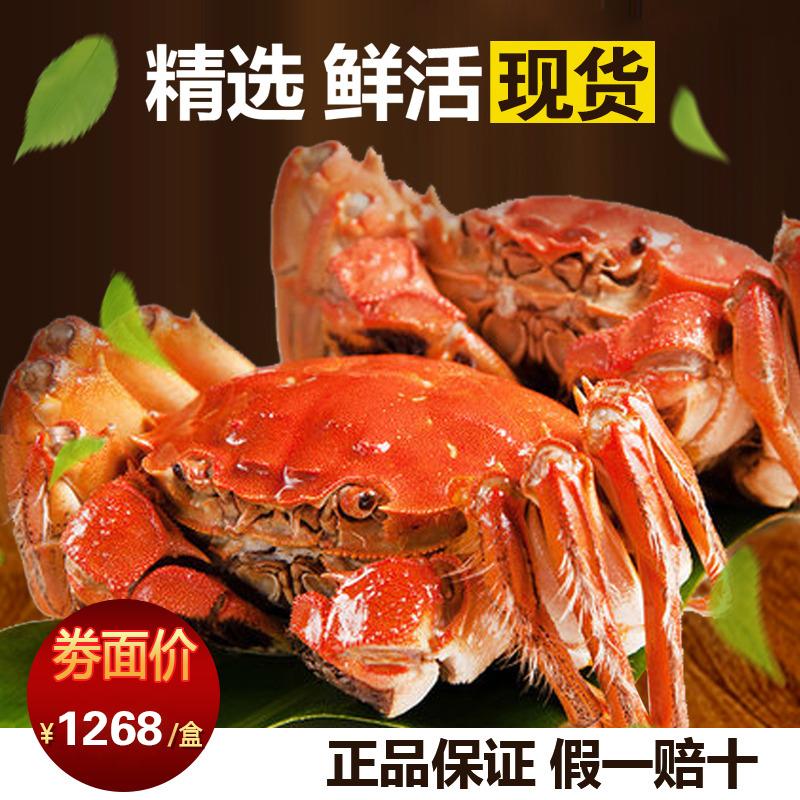阳澄湖大闸蟹公蟹3.8 母蟹2.8四对八只