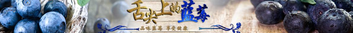 中国蓝莓交易网