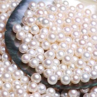 供應 圓珠半孔珍珠