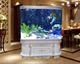 欧式双圆弧鱼缸  超白亚克力鱼缸 观赏大型鱼缸