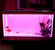 鱼缸 五面超白鱼缸 高档水族箱