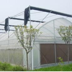 供应专业设计生产大棚 温室大棚