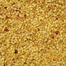 供应大量出口装箱辣椒籽