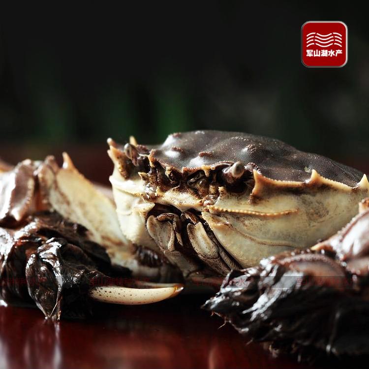 大闸蟹鲜活螃蟹公4.1-3.7两 母3.1-2.7两 4对8只礼盒装