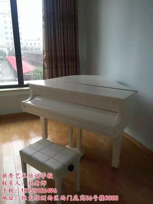 新秀艺术培训(在线咨询)|娄烦县钢琴培训|速成钢琴培训机构