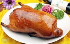 大量优质调理鸭 欢迎采购 厂家直销 量多价格优惠