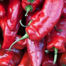 湖南辣椒精选优质品种只要10元以千克