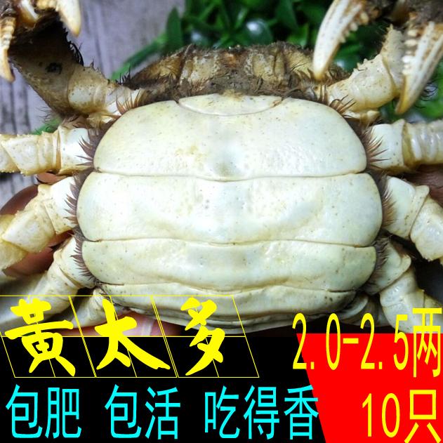 大闸蟹鲜活公母蟹螃蟹礼盒装