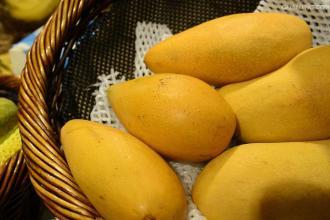 专家提醒:芒果别放冰箱