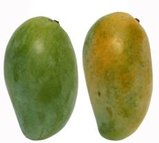 海南特产 新鲜水果 鸡蛋芒果 10斤 举报