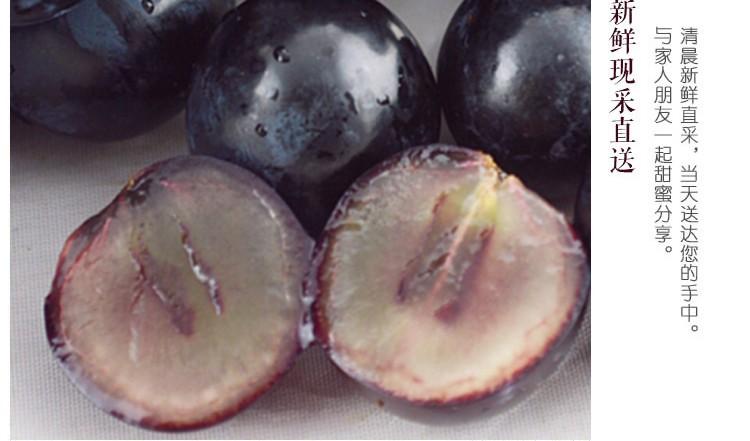 供应 黑珍珠葡萄  绿色无公害  全天然种植 5斤一箱