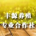6-23 丰源养殖logo
