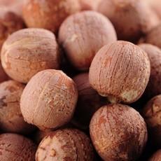 红皮莲子 优质农产品 湘莲子 堂皇食品
