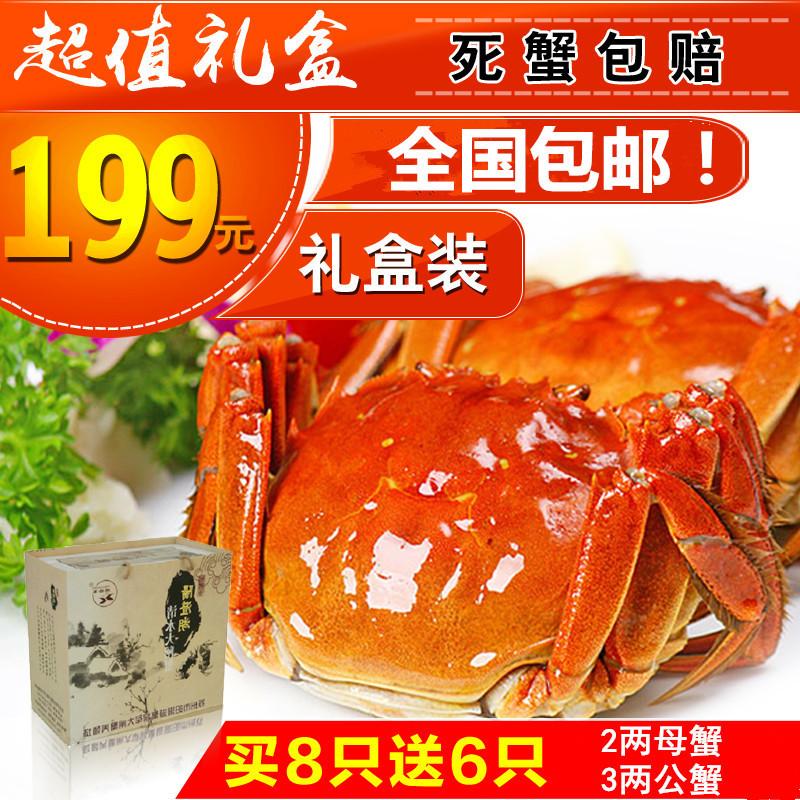 现货正宗阳澄湖大闸蟹鲜活公螃蟹4.5-5.0两母蟹3.5-4.0两8只礼盒