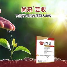 河南美盛农业尚采芸收芸苔素调节剂增产增收防病大不同