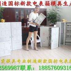 台州专做3表电表箱模具,注射电表箱模 变压器防护罩注射模具制造