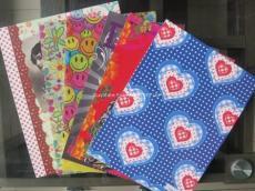 江苏苏州塑料文具PP笔记线圈本封面、封底、插页