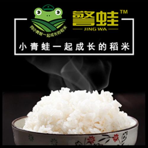 警蛙绿色香米1000KG  有机栽培 无化肥无农药 不抛光农家大米
