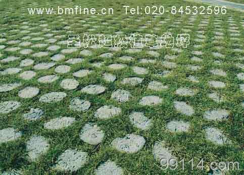植草地坪,高承载透水植草地坪,生态植草地坪,超级植草地坪,透水植草地坪,植草路面