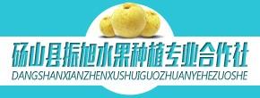 砀山县振旭水果种植专业合作社