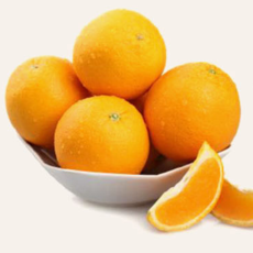 大量供应脐橙10斤