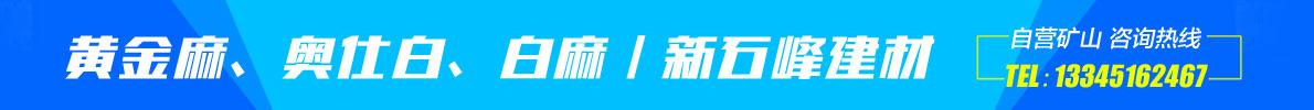 金牌-新石峰
