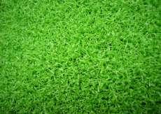 园林装饰人造草皮,绿化人工草坪