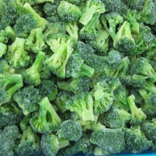 供应 速冻绿花菜