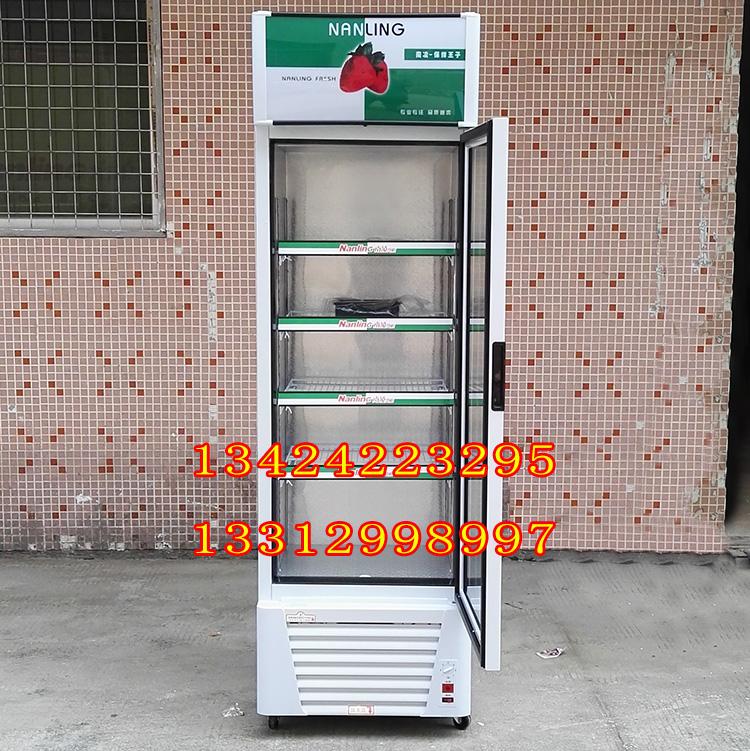 南凌冷柜LG-180 LG-218 LG-238 LG-280 啤酒饮料单门直冷展示柜