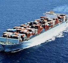 中国到北非海运航线-阿尔及利亚奥兰,贝加亚优质海运服务,斯克基达船运找坤鑫货代