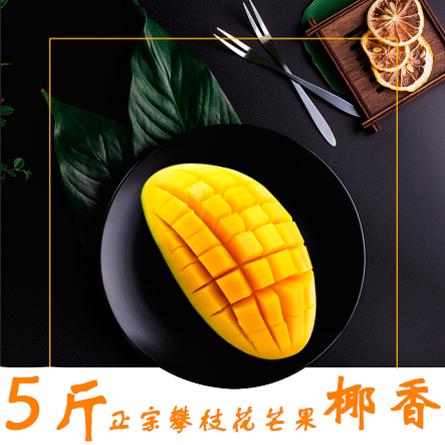 攀枝花芒果 源美村 优质椰香5斤装 独特椰奶香味的芒果