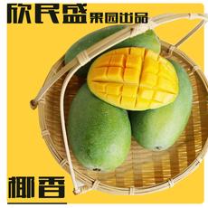攀枝花椰香欣民盛芒果果园直发一件代发新鲜水果椰香芒