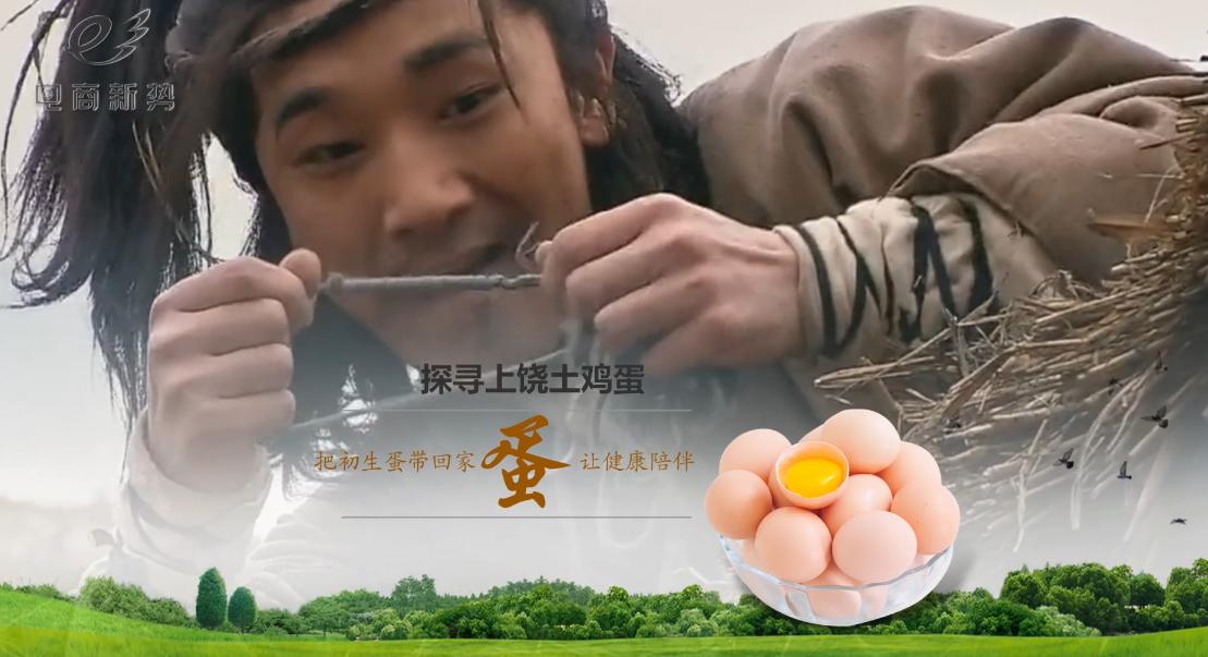 【网库微视】上饶土鸡蛋