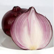 供应洋葱 批发新鲜有机蔬菜 绿色食品红圆葱批发量大价格面议